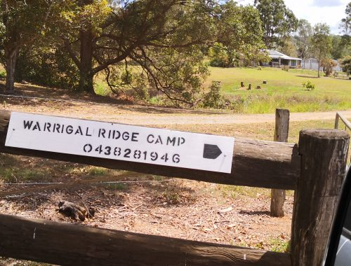 Warrigal Ridge Camp